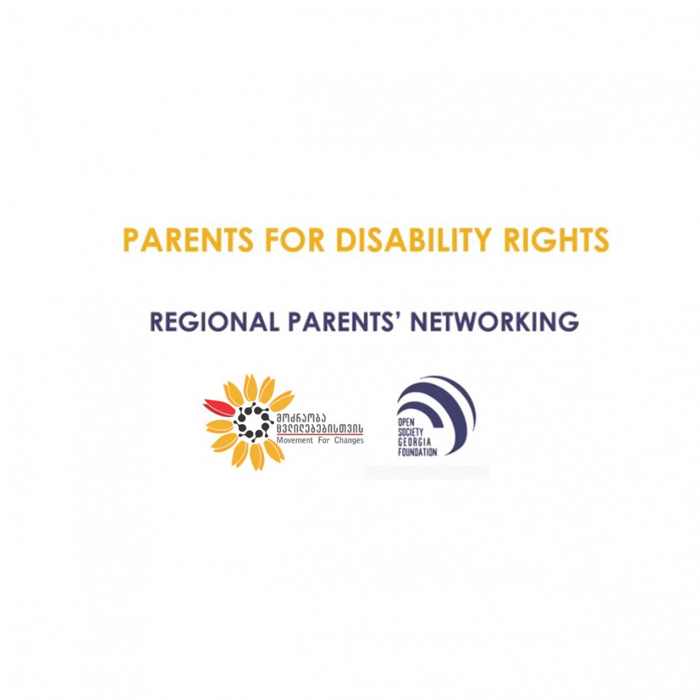 8 ქვეყნის შშმ მშობელთა ორგანიზაციები საქართველოში